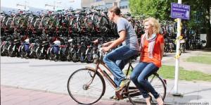 vélo stop copy