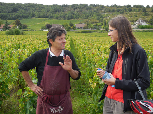 wine tasting Burgundy