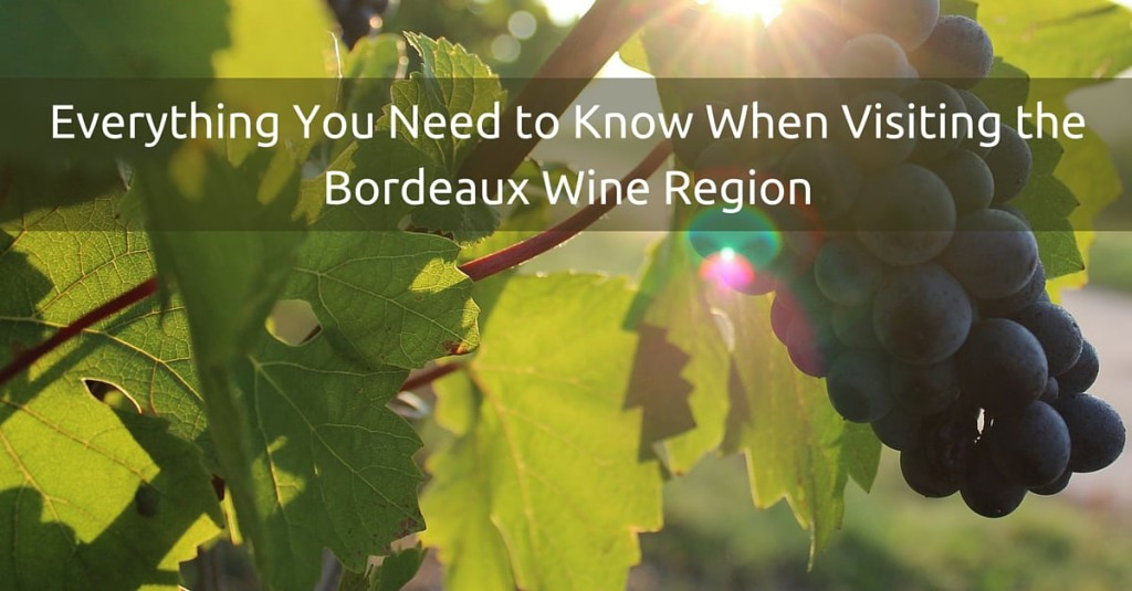 Everything You Need to Know When Visiting the Bordeaux Wine Region