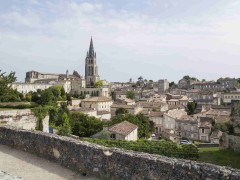 Wine Region saint-emilion