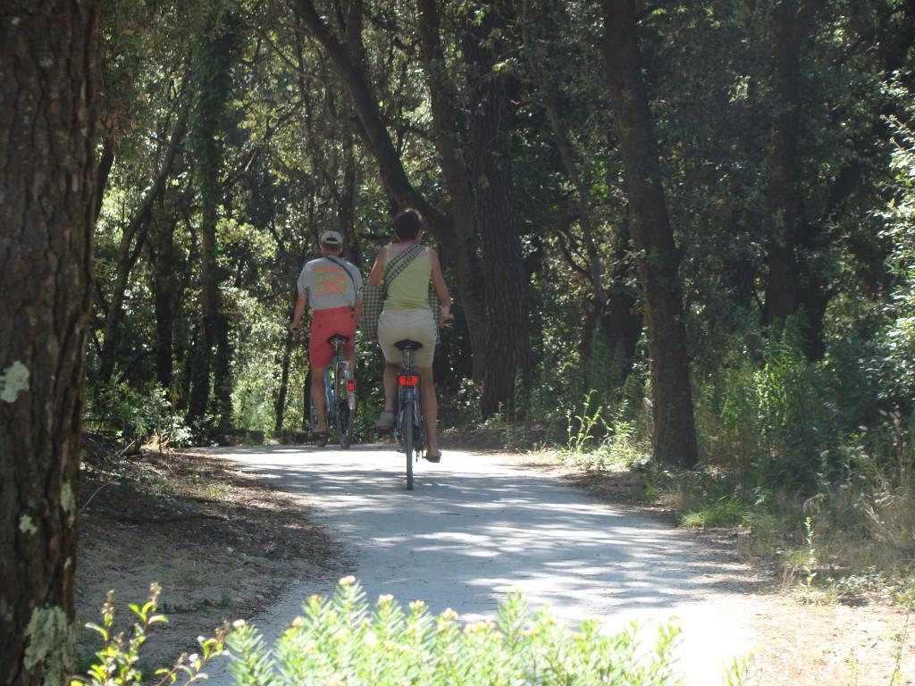 de Marennes à Royan sur la Vélodyssée