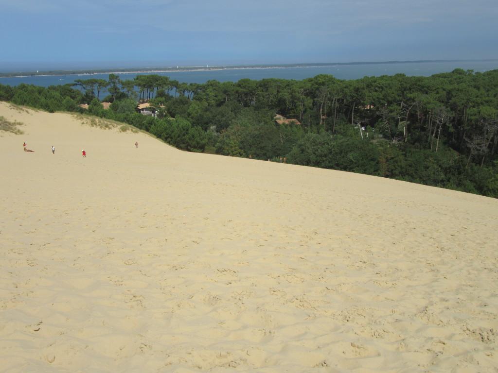 landes à vélo entre arcachon et biarritz-dune-Pilat