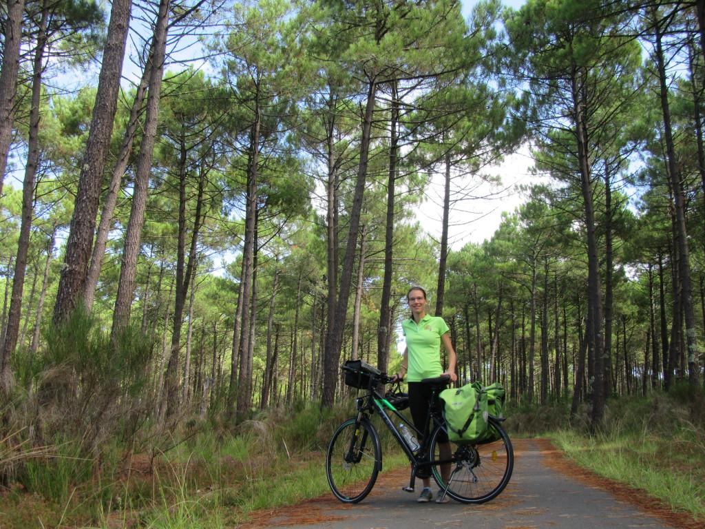landes à vélo entre arcachon et biarritz-forêt